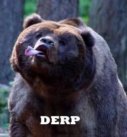 Derp Bear