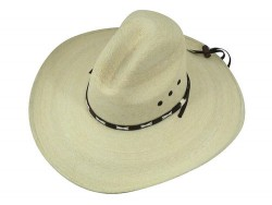 western_hats_with_chin_strap_palm_top_view__48257.1410613967.500.600