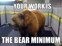 Bear Minimum