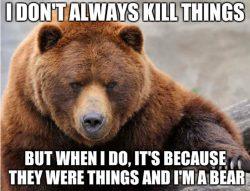 Bear Kill Things