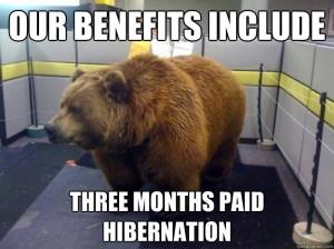 Office-Bear_Hibernate
