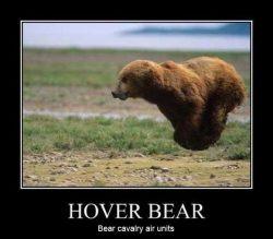 Hover Bear